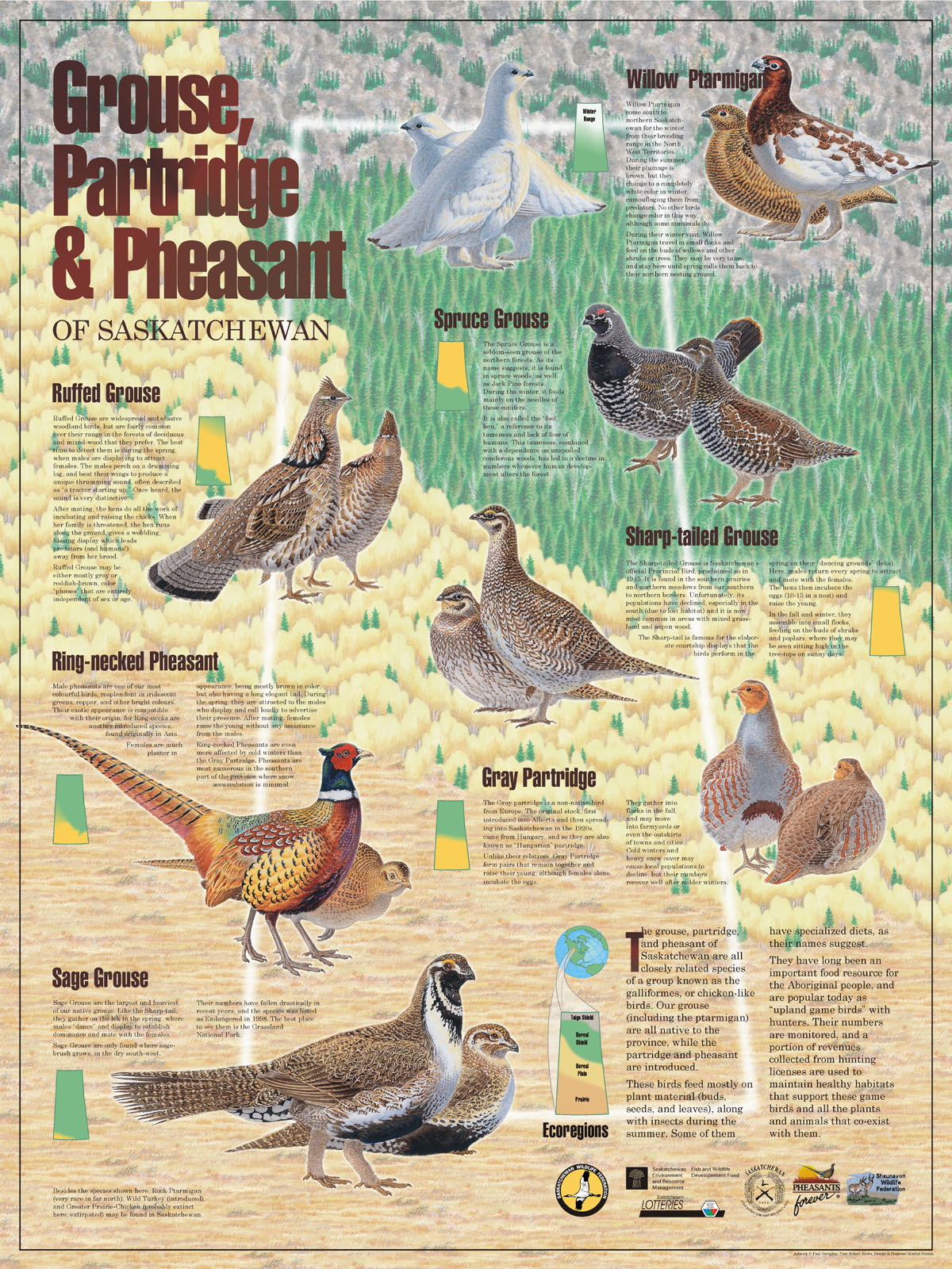 Wildlife posters saskatchewan wildlife federation