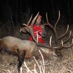1 NT Elk - Brownridge