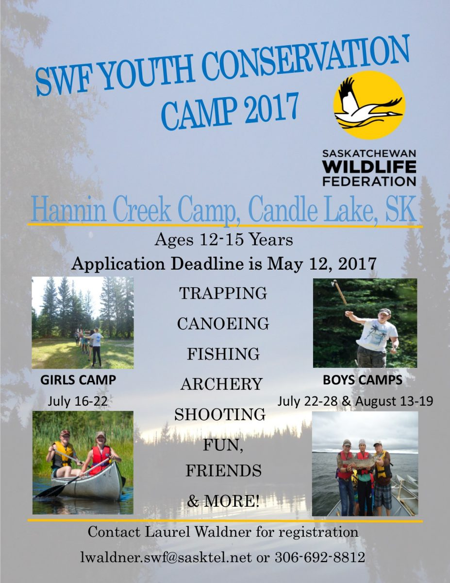 conservation camp 2017 poster