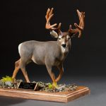handpainted-deer