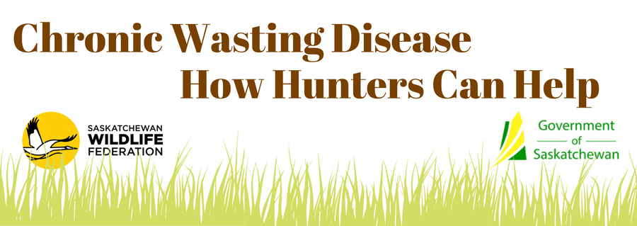 Chronic Wasting Disease - How Hunters Can Help