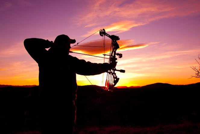 How to Choose a Hunting Bow for Beginners